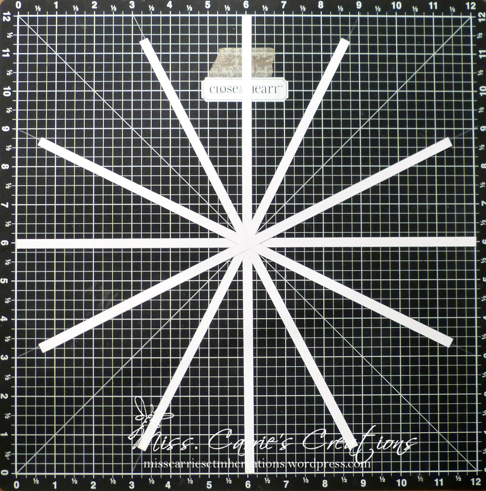 ButterflyCage-Pinwheel